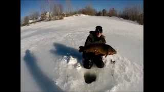 Ice Fishing Carp 2014