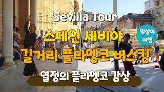 스페인 여행 중 만난 플라멩코 댄서들의 길거리 공연 버…