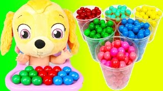 Color Learning with Paw Patrol Sky on School Bus Gumballs  Teacher Ellie Sparkles Pt 1