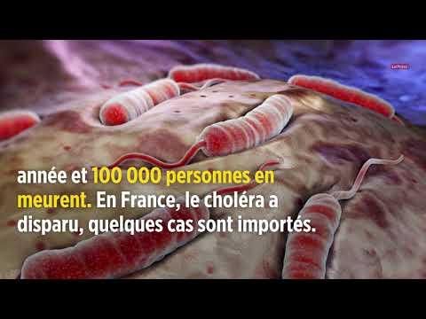 Les épidémies et pandémies qui ont marqué l'histoire