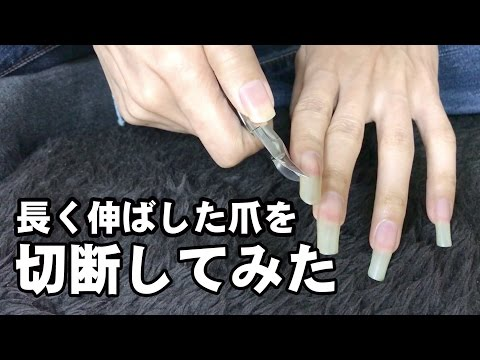 長く伸ばした爪を切る long fingernails on man