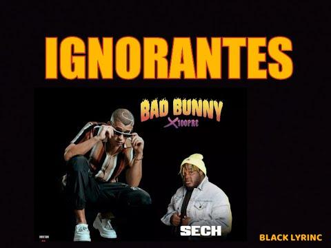 Ignorantes - Bad Bunny x Sech [LETRA] [HD]