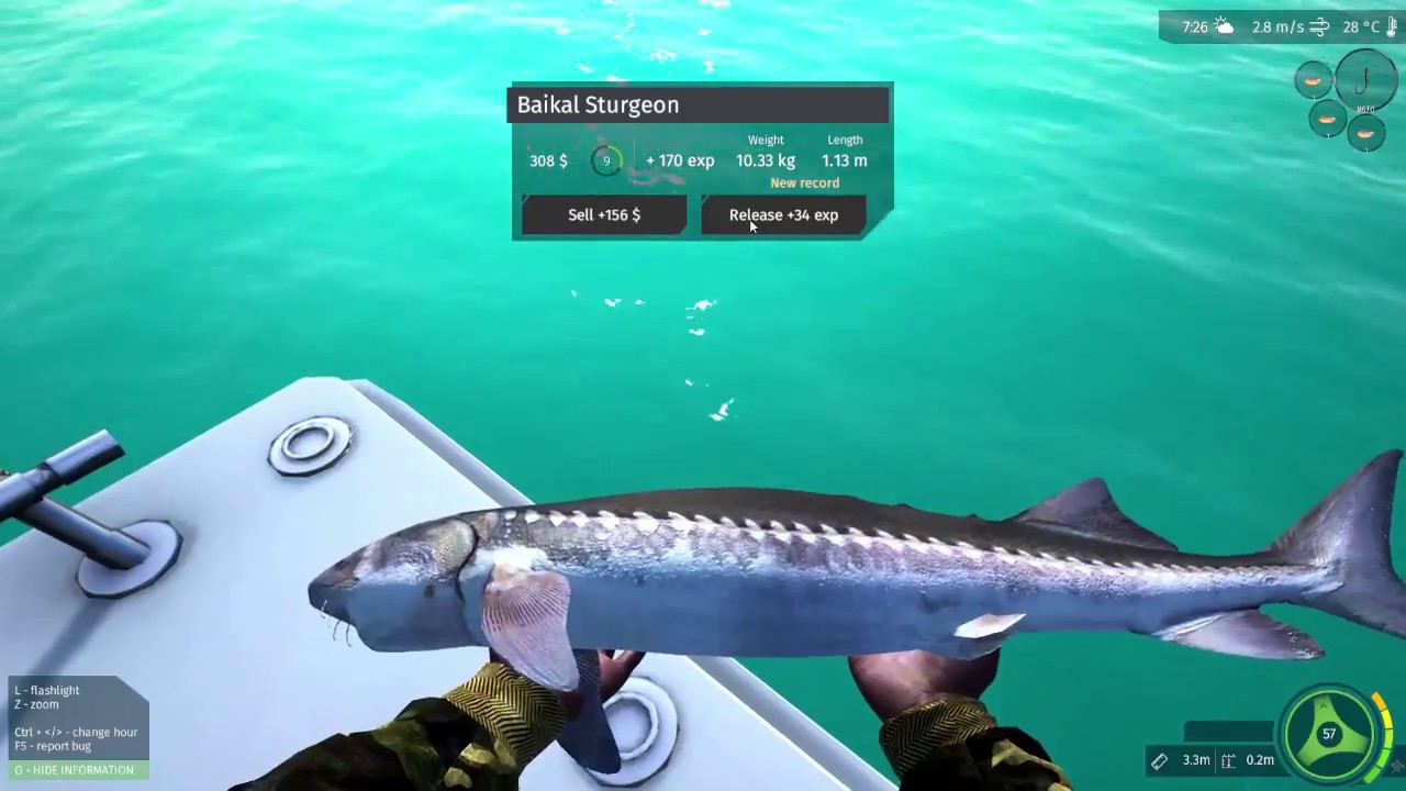 Ultimate Fishing Simulator Leveling Guide Tips And Tricks