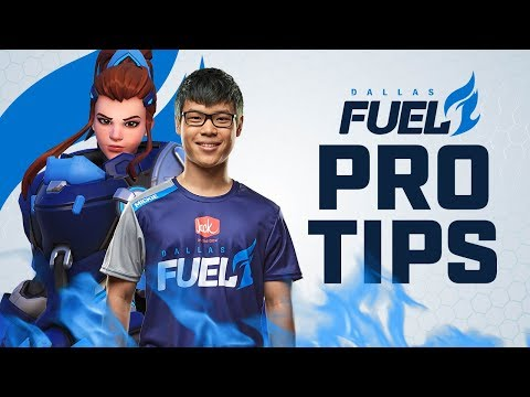 Fuel Pro Tips   Brigitte Tips and Tricks   Mickie