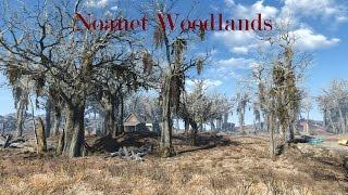 Локация Ноанет Вудлэндс Fallout 4
