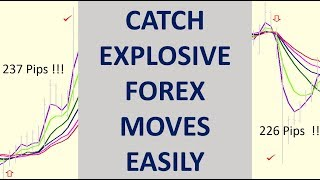Explosive Forex Moves. The FREE Multiple Moving Average indicator is by far the best to catch them.