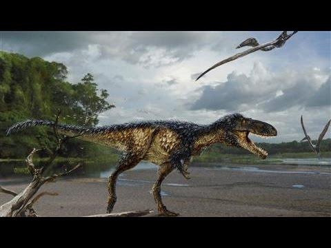 New Fossil Sheds Light on Evolution of T.Rex