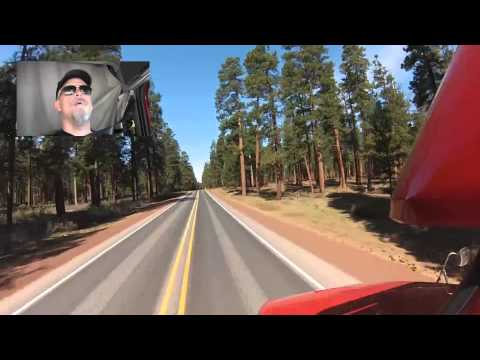 Trucking in the Tall Tall Trees of Oregon
