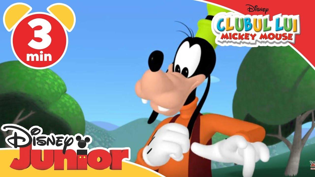 Clubul Lui Mickey Mouse Cântecelul Lui Goofy Doar La Disney Junior Youtube