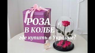 Роза в колбе, Украина(, 2017-02-27T15:33:51.000Z)