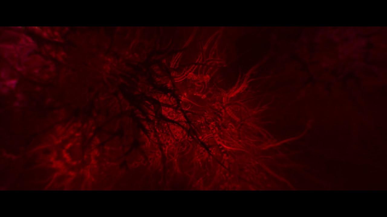 Download Enter The Void - DMT Scene (1080p HD)