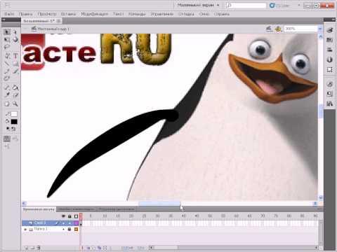 20. Импорт (вставка) стороннего изображения в Adobe Flash CS5
