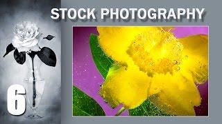 6. Stock Photography. Сток Тема: Как необычно и красиво фотографировать цветы в воде