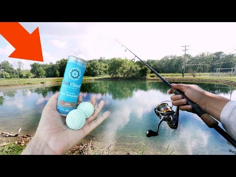 Bath Bomb For FISHING!? (Does It Work?)
