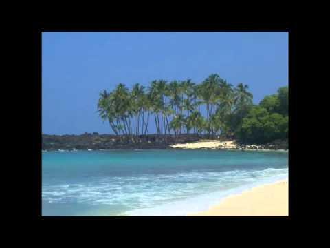 Hawaii 2008 Hunts