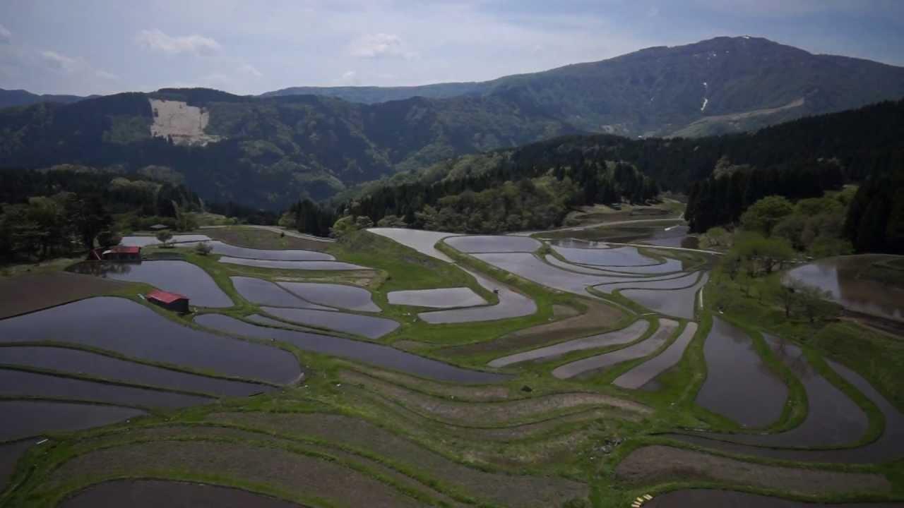 空撮:ハチ高原と別宮の棚田【養...