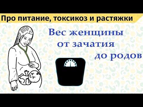 Вес женщины при беременности