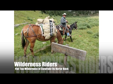 Flat Tops Wilderness of Colorado adventure by Horse Back 201