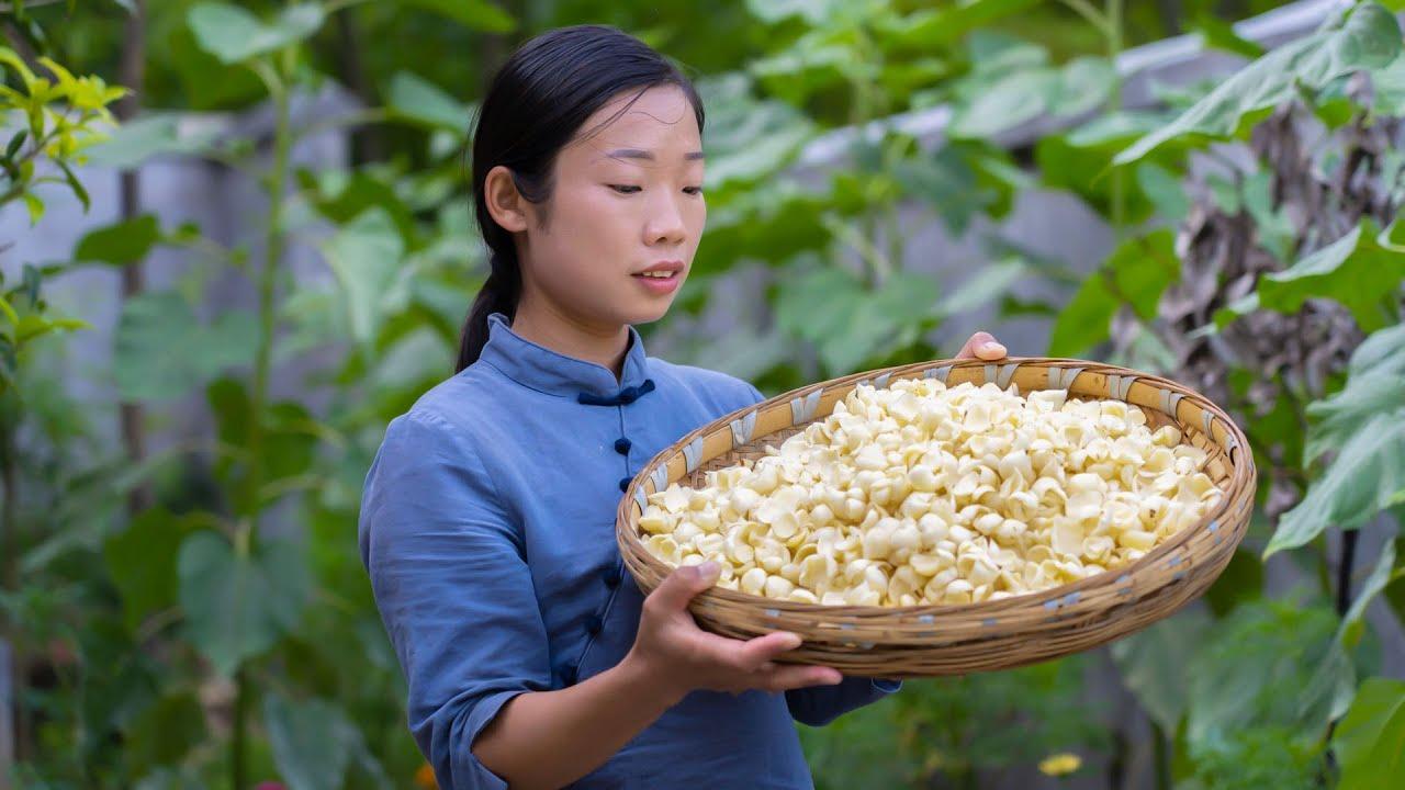 幾百米高的山上種了一種好東西,爬到山頂 挖些回去,做自己喜歡吃的百合 美食   Chinese food made with Lilium   野小妹wild girl