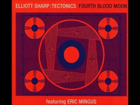 Elliott Sharp Tectonics feat. Eric Mingus - Mr. Trouble