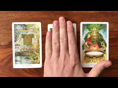 Tarot Scott Reading Gregory for Daily August 2017 12