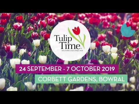 Tulip Time TVC