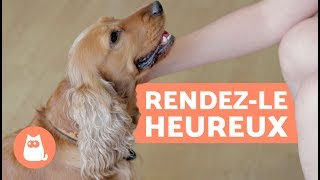 Comment rendre son chien heureux ?  10 conseils clés !