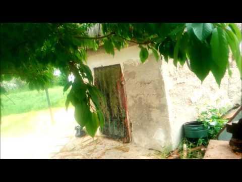 Продажа домов и дач в Дагомысе Дагомыс