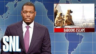 Weekend Update on Baboons Escaping Paris Zoo - SNL