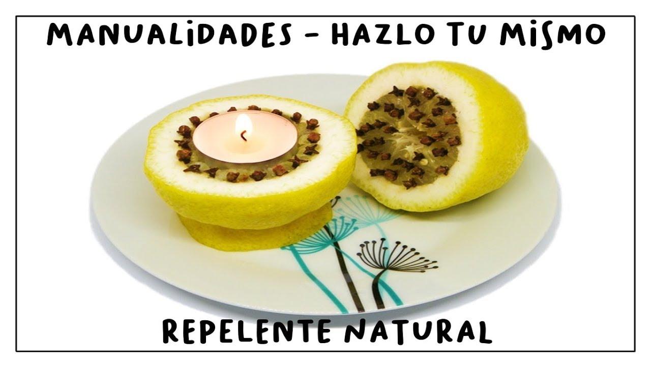Cómo Hacer En Casa Repelente Natural De Moscas Y Mosquitos Con Limón Y Clavo Youtube