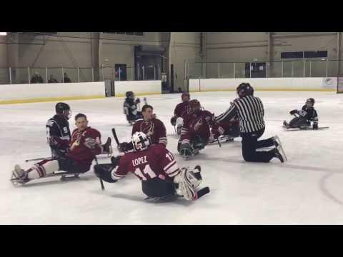 NHL Sled Hockey Kings vs Coyotes