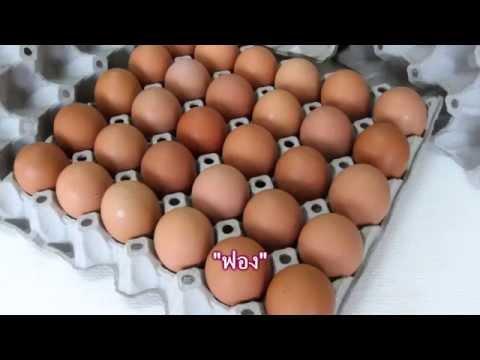 คำลักษณะนามของไข่