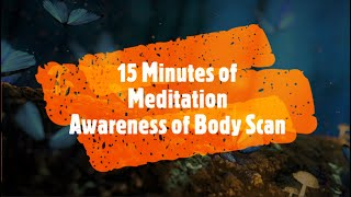 Awareness and Body Scan | 15 Minutes of Guided Meditation