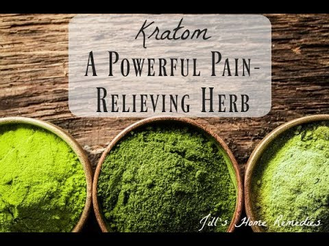 FDA Seeks Crackdown On Kratom