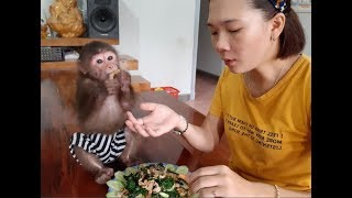 Mom And Monkey Doo Have Breakfast With Fried Noodles