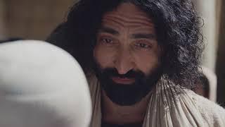 Евангелие на каждый день: от Матфея, глава 21