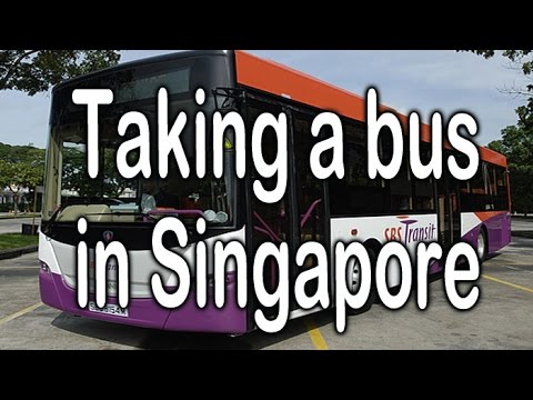 Taking a bus in Singapore