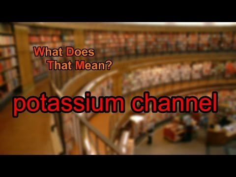 What does potassium channel mean?