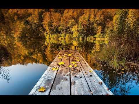 Клип Красная Плесень - Осень