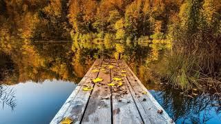 Красная Плесень - Осень