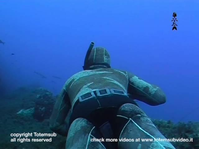 Le stagioni della pesca in apnea part5 video ufficiale Totemsub Video