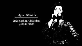 Aysun Gültekin - Bala Sarhoş Adalardan  Çıktım Yayan • Türkü Dinle