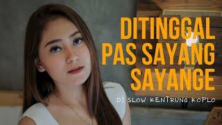 Dj Kentrung Koplo - Vita Alvia - Ditinggal Pas Sayang Sayange (Official Music Video ANEKA SAFARI)