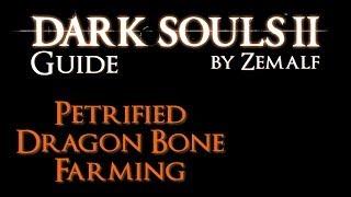 Petrified Dragon Bone Farming - Dark Souls 2 Guide - How to Farm Petrified Dragon Bones