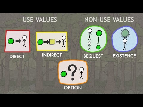 Valuation of Ecosystem Services: Classes of Values