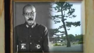 37. Вторая мировая война - День за Днём
