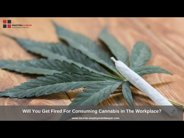 Can You Get Fired For Consuming Cannabis in The Workplace?