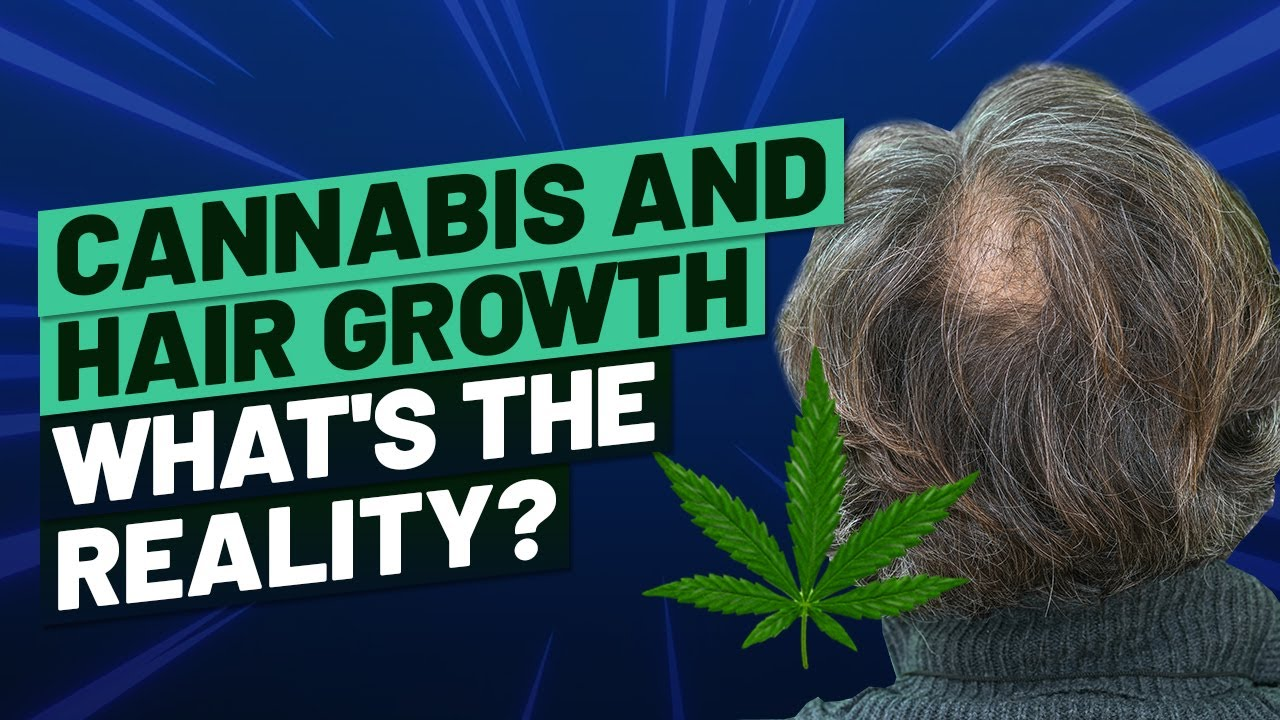 Cannabis and Hair Growth – What's The Reality?