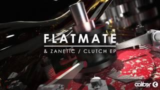 Flatmate - Atom