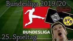 BUNDESLIGA 19/20 25.Spieltag - Vorschau und Tipps